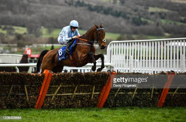 Cheltenham United Kingdom 10 March 2020 Honeysuckle with Rachael Blackmore on jumps the last on their way to winning the Close Brothers Mares' Hurdle...
