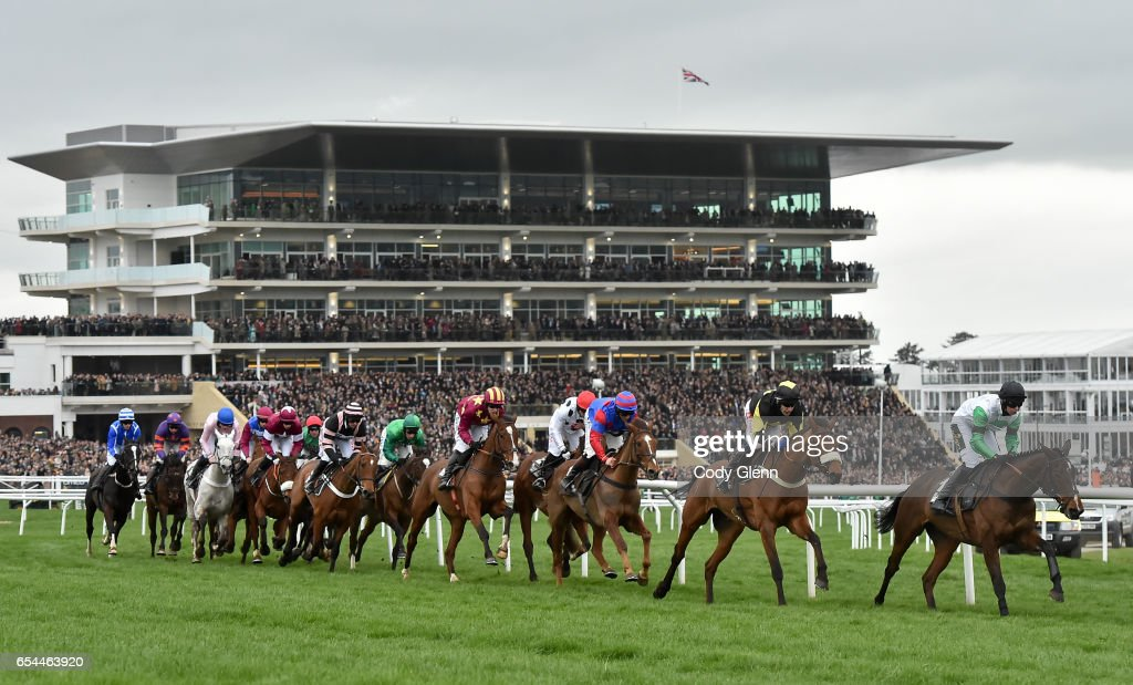 Cheltenham Racing Festival - Gold Cup Day : News Photo