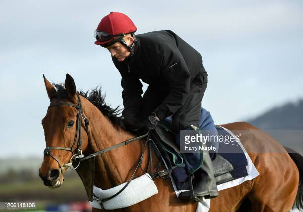 Cheltenham United Kingdom 9 March 2020 Honeysuckle with Coleman Comerford on the gallops ahead of the Cheltenham Racing Festival at Prestbury Park in...