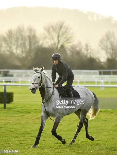 Cheltenham United Kingdom 9 March 2020 Rachael Blackmore with Petit Mouchoir on the gallops ahead of the Cheltenham Racing Festival at Prestbury Park...