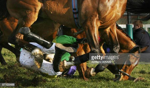 Jockey Ruby Walsh goes under the hooves of Moscow Flyer as he falls from French horse Kauto Star during The Queen Mother Champion Steeple Chase on...