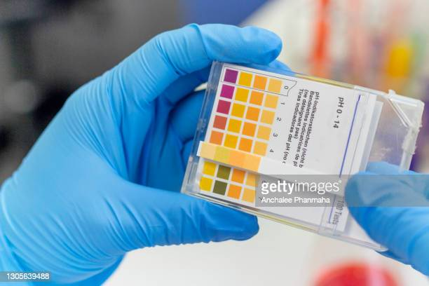 chemical laboratory concept: close up picture of the chemist checking the ph value of sample by litmus paper - ph value stock pictures, royalty-free photos & images