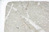 chemical limestone mineral microscopy slide under