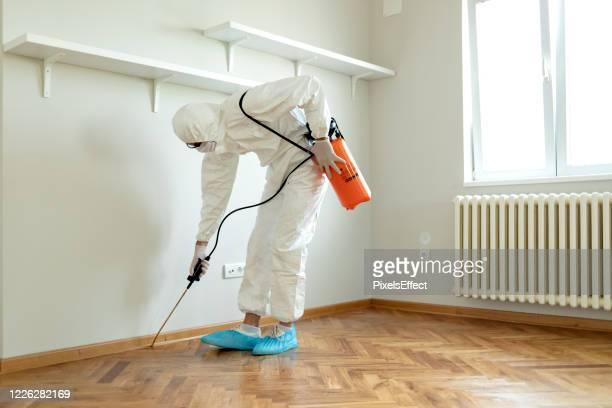 protection chimique - termite photos et images de collection
