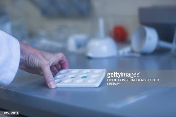 chemist working in laboratory - sigrid gombert stock pictures, royalty-free photos & images