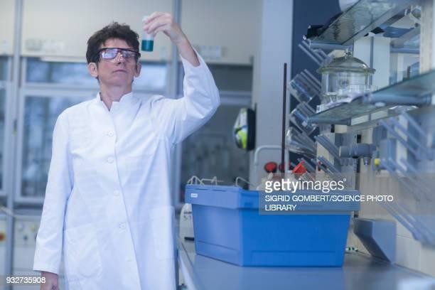 chemist working in laboratory - sigrid gombert stockfoto's en -beelden