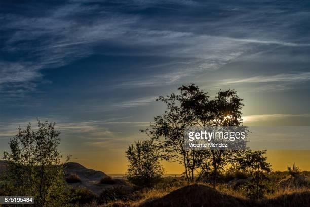 chemtrails sunrise - chemtrails stock-fotos und bilder