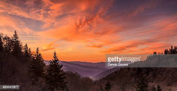 cherokee overlook at dawn - newfound gap stock photos and pictures