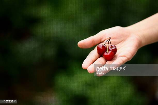 cherries - annfrau stock pictures, royalty-free photos & images