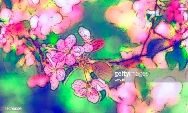 cherry, apple blossom on defocussed background watercolor style illustration - apple blossom tree stock pictures, royalty-free photos & images