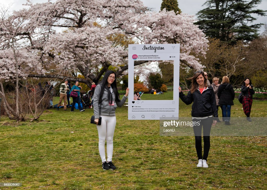 Cherry blossom fesitval in Queen Elizabeth Park, Vancouver, Canada : Stock Photo