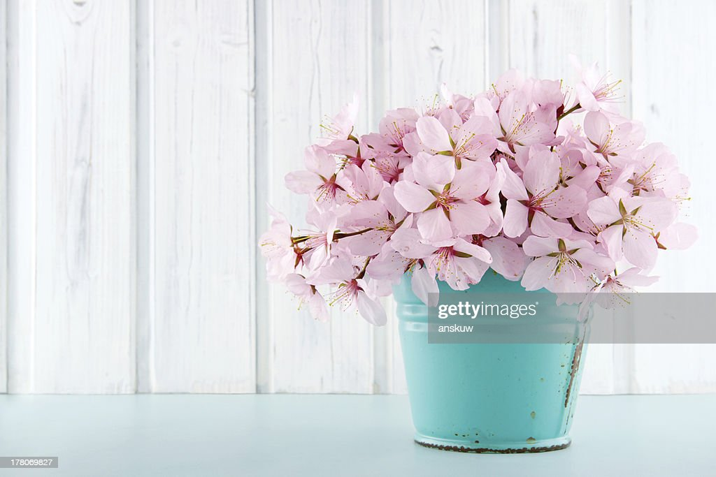 Cherry Blossom Flower Bouquet On Wooden Background Stock Photo ...
