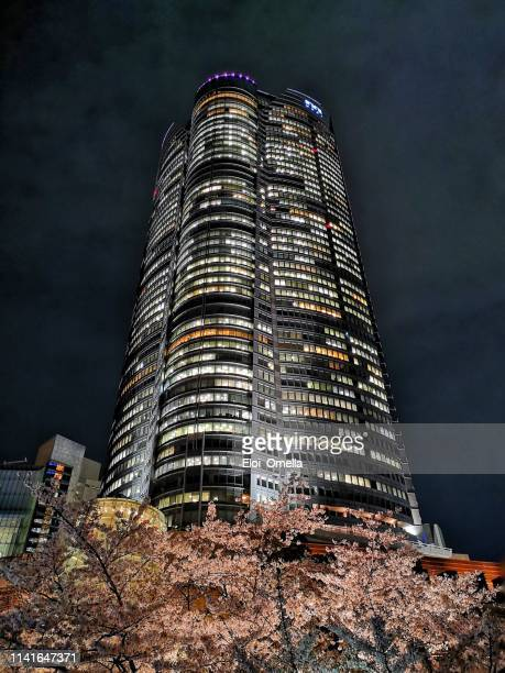 cherry blossom in roppongi hills mori tower at night. toyko - roppongi hills stock pictures, royalty-free photos & images