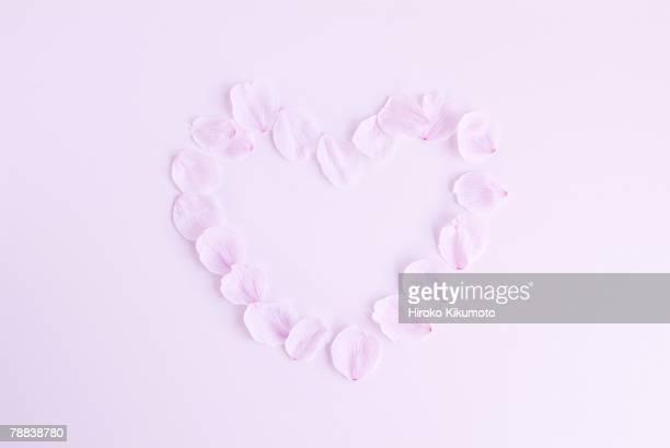 Cherry blossom petals creating heart shape
