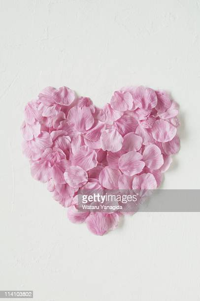 Cherry blossom petals in heart shape