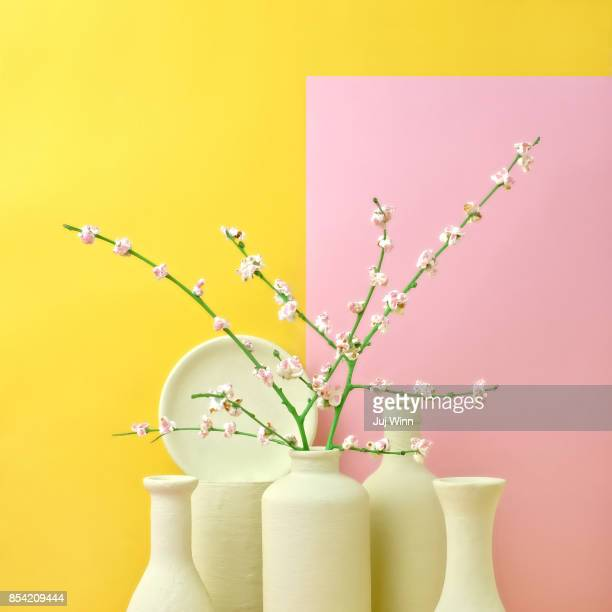 cherry blossom popcorn in monochromatic vases - toned image stock pictures, royalty-free photos & images