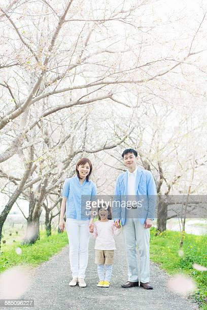 Cherry blossoms and family