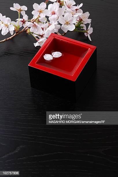 Cherry blossoms and sake