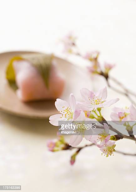 Cherry blossoms and sakura mochi (cherry flavored soft sweet rice cake)