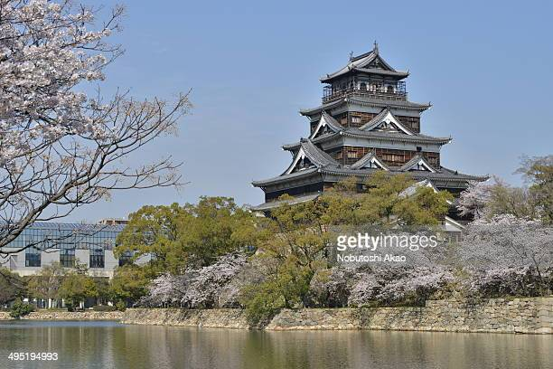 CONTENT] Cherry blossoms are in full bloom on both sides of the moat surrounding Hiroshima Castle normally from late March to early April