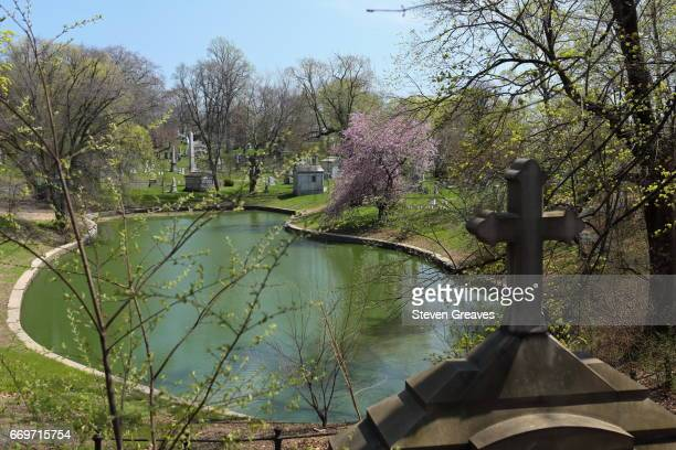 Cherry blossoms at Green-Wood Cemetery.