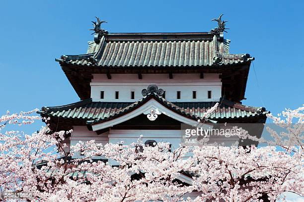 cherry blossoms at hirosaki castle, aomori prefecture, honshu, japan - hirosaki castle stock pictures, royalty-free photos & images
