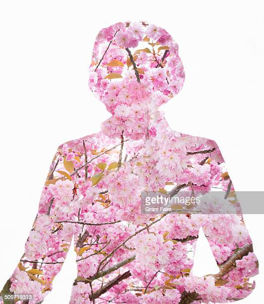 Cherry blossoms shaped as lady.