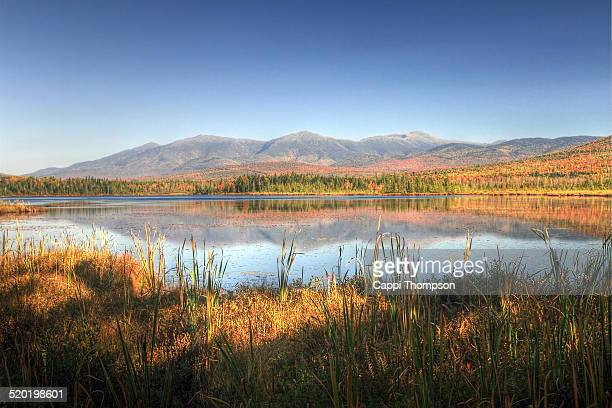 cherry pond landscape - cappi thompson stock pictures, royalty-free photos & images