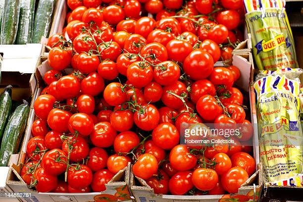 Cherry Tomatoes Burough Market London