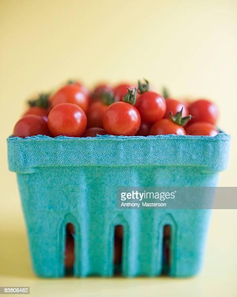 Cherry tomatoes (Solanum lycopersicum) in pint box