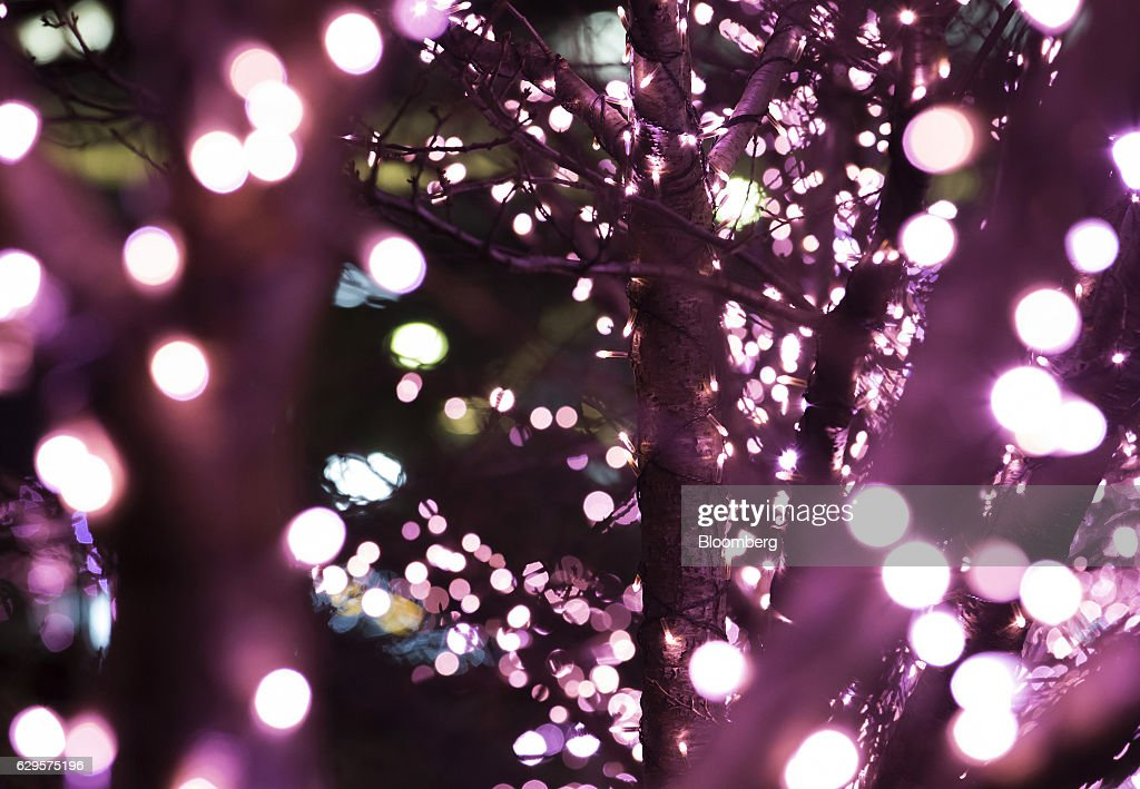 LED Lights In Japan Powered By Used Cooking Oil : News Photo