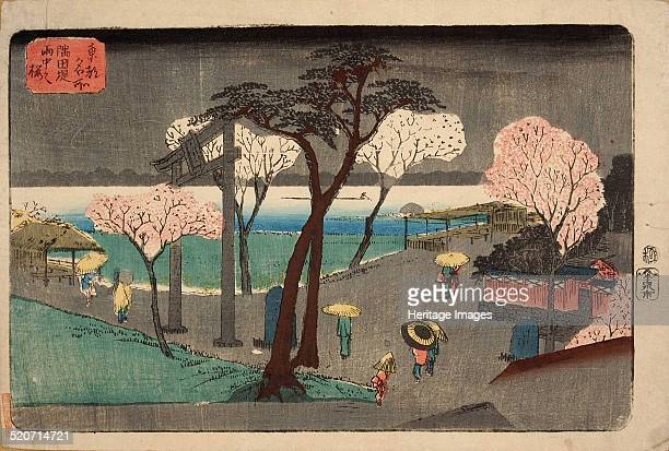 Cherry Trees in Rain on the Sumida River Embankment Private Collection