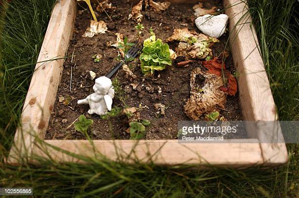 A cherub and a fork lie in a growing bed at the peace camp in Parliament Square on June 30 2010 in London England Mayor of London Boris Johnson has...