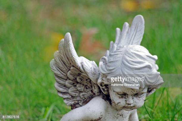 cherub statue, close-up, against grass background - grabmal stock-fotos und bilder