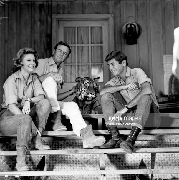 Cheryl Miller Marshall Thompson and Yale Summers star in Daktari a CBS television African adventure series Image dated October 28 1965