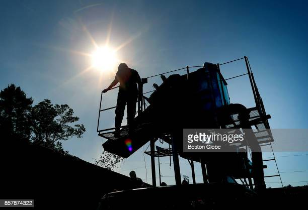 Cheryl Weston stands atop of a conveyor belt machine that shoots the cranberries into a truck during cranberry harvest at the Weston Cranberry...