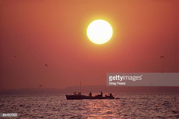 """chesapeake bay crab and oyster workboat at sunrise - """"greg pease"""" stock pictures, royalty-free photos & images"""