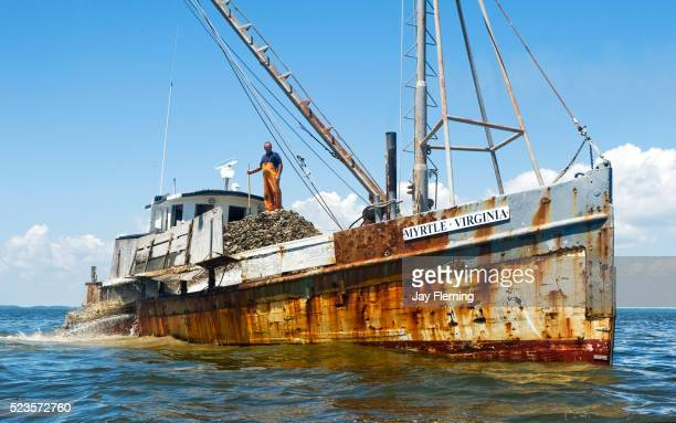Chesapeake Buy Boat with Oyster Shell