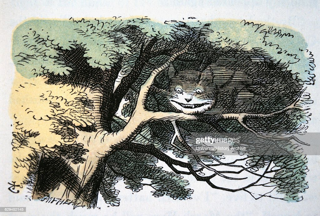 Cheshire Cat Alice Childhood Literature : News Photo