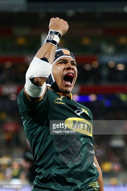 Cheslin Kolbe of South Africa celebrates after scoring a try during The Rugby Championship match between the New Zealand All Blacks and the South...