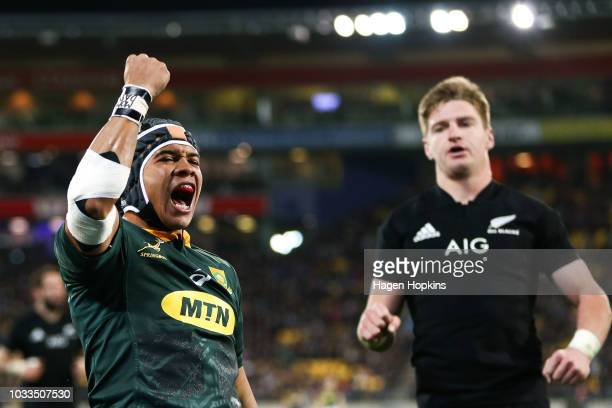Cheslin Kolbe of South Africa celebrates after scoring a try while Jordie Barrett of New Zealand looks on during The Rugby Championship match between...