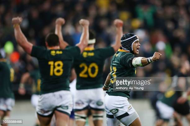Cheslin Kolbe of the Springboks celebrates after winning The Rugby Championship match between the New Zealand All Blacks and the South Africa...