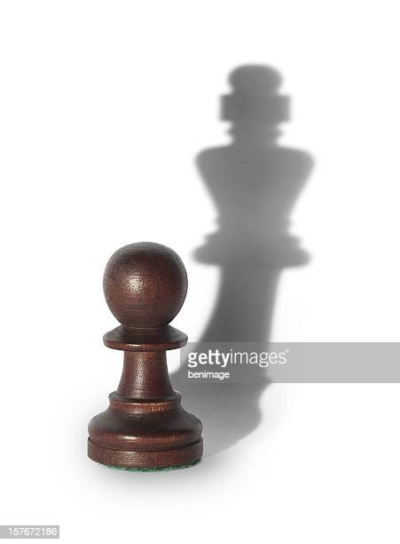 chess king's shadow