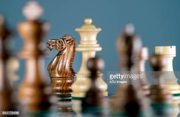 chess, knight,