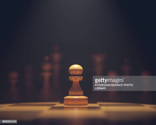 Chess pawn on board