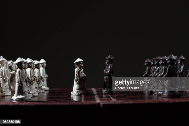 chess - queensland umbrella tree stock pictures, royalty-free photos & images