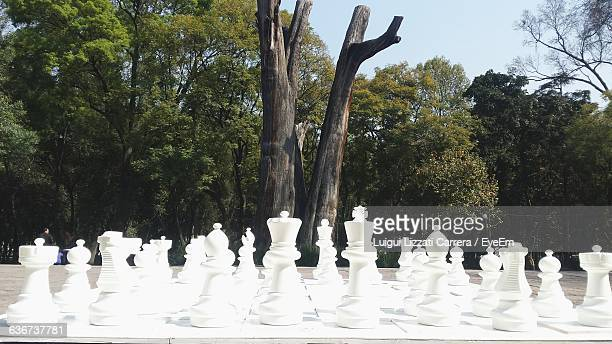 Chess Pieces On Table Against Trees At Park