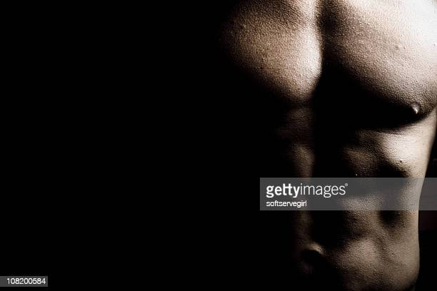 chest of male body builder - male torso stock photos and pictures