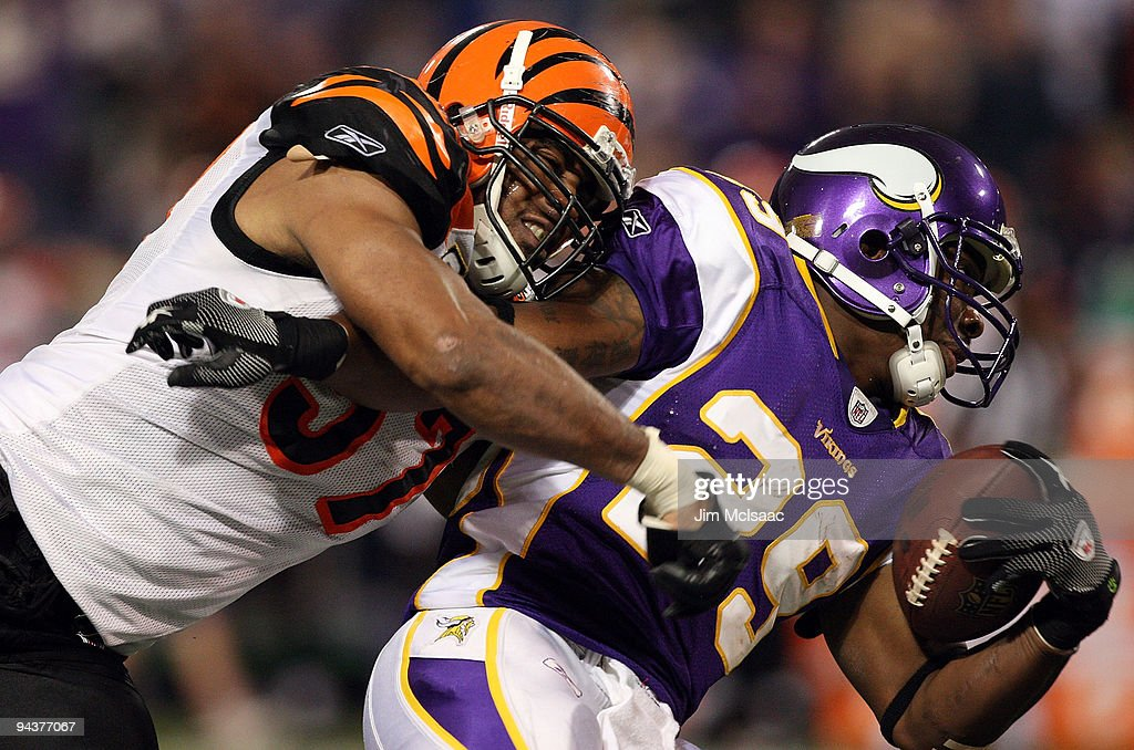 Chester Taylor #29 of the Minnesota Vikings runs the ball against Dhani Jones #57 of the Cincinnati Bengals on December 13, 2009 at Hubert H. Humphrey Metrodome in Minneapolis, Minnesota. The Vikings defeated the Bengals 30-10.