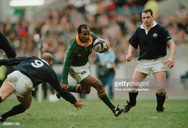 Chester Williams of South Africa in action during the Rugby Union International between Scotland and South Africa at Murrayfield in Edinburgh on 19th...
